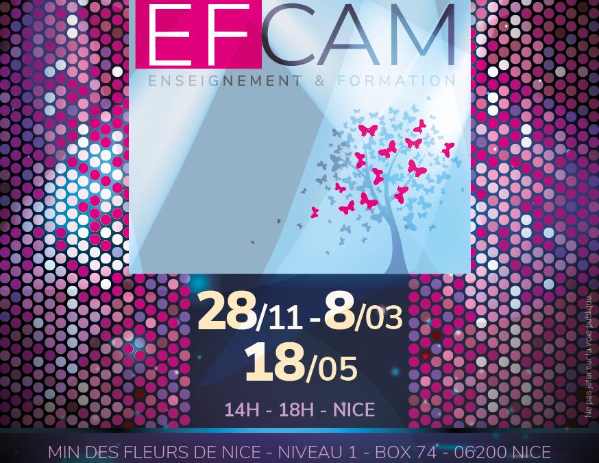 Flyers EFCAM 2018